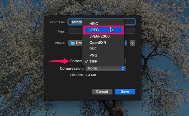 How to Convert WebP Images to JPG on Mac